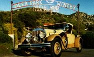 Antique Cars and Wine at Deer Park Wine and Auto Museum
