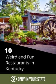 A night out at a restaurant should be unique and interesting. That's why we've compiled these 10 wacky and fun restaurants in the Bluegrass state that will add some adventure to any night out! Fun Restaurants, Best Bucket List, Cool Restaurant, Pure Fun, Hidden Beach, Swimming Holes, Abandoned Buildings, Natural Wonders, Kentucky