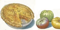 In time for the season, Drew Robinson of Jim 'N Nick's Bar-B-Q in Birmingham, AL shares his recipe for tomato pie. (Photo Credit: John Burgoyne.) #gardenandgun #tomatopie