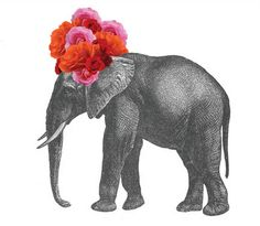 You know what they call female Republicans? .... pink elephants (with flair in their hair!) ♥