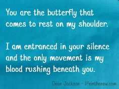 Butterfly ~ Love in Blue ~ lifeinthenow.com