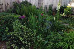 The Gardener's Garden Norwalk, CT