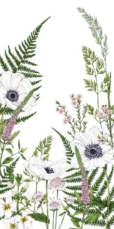 #Wild #Meadow. #Casetify #Art #Design #Flowers #Fern Illustration Photo, Plant Illustration, Botanical Illustration, Drawing Wallpaper, Wallpaper Backgrounds, Iphone Wallpaper, Aztec Wallpaper, Iphone Backgrounds, Art Floral