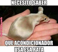 ¿Que acondicionador usará? #meme #memesespañol #memes #funny #wtf #momos #humor #love #frases #comedía #friends #amigos #amor #risas #chistes #instagram #follow #followme #humorlatino