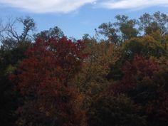 Fall in Oklahoma