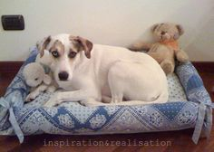 Cool DIY pet projects including homemade dog treats, cat treats, and instructions for a pet bed. Learn how to make cool DIY toys and recipes for your pet! Diy Pet, Diy Dog Bed, Animal Projects, Animal Crafts, Do It Yourself Fashion, Diy Stuffed Animals, Pet Beds, Fur Babies, Sewing Projects
