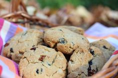 Currant, Gooseberry, Blueberry Cookies — SIBO Diet recipes