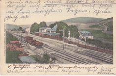 Bahnhof  Bad Salzschlirf 1905