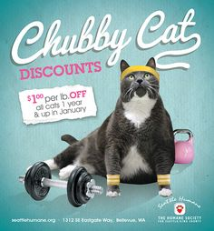 Everyone loves a Chubby Cat! Get $1 per pound of any cat 1 yr & up at Seattle Humane throughout the month of January. If you find a 25 lb. cat - their adoption is FREE! Learn more at http://www.seattlehumane.org/adopt/process/promos