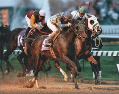 Tobasco Cat 18: 8-3-2 Earnings$2,347,671 Major wins San Rafael Stakes (1994) El Camino Real Derby (1994) Kentucky Cup Classic Handicap (1994) Triple Crown race wins: Preakness Stakes (1994) Belmont Stakes (1994)