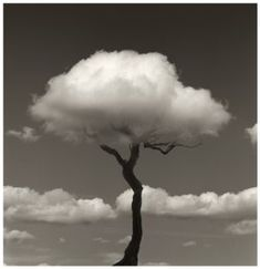 Black and White Art Photography . chema madoz has a unique perspective for black and white photography Fotografia Fine Art, Cool Photos, Beautiful Pictures, Dream Images, Pretty Photos, Nature Pictures, Clouds Pattern, Photocollage, Jolie Photo