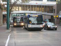Edmonton New Flyer buses