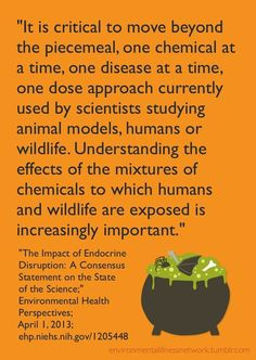"""In """"The Impact of Endocrine Disruption: A Consensus Statement on the State of the Science,"""" http://ehp.niehs.nih.gov/1205448/ scientists from around the world strongly make the case for why it is essential to change the way endocrine disrupting chemicals are tested and treated. Endocrine disrupting chemicals include BPA (which is found in many plastics) and glyphosate (a primary ingredient in one of the most widely-used GMO crop pesticides)."""