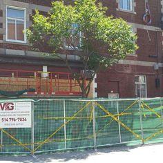 Sécurité en premier: clôture de chantier / Safety first : construction site fence