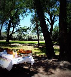Charms of a Summer Picnic.  The Menu for an American summer picnic:  Cold Fried Chicken, Sandwiches filled with cold cuts and veggies, Egg Salad sandwiches, Pasta salad, Fresh Melon Ball salad, Green Salad, Homemade Chocolate Sheet cake, and Fun chips