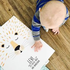 """Gefällt 127 Mal, 9 Kommentare - Pünktchen und Buntfleck (@puenktchen_und_buntfleck) auf Instagram: """"Hallööööööchen...hier noch ein weiteres Bild von der lieben Olga @o_l_j_a_ mit meinem Löwen 😊!…"""""""