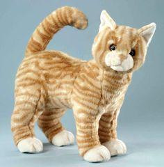 Katze ginger-braun gestreift