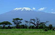 Flight Madrid to Nairobi for 347 EUR