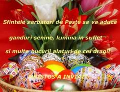 felicitare virtuala d e paste - Yahoo Search Results Yahoo Image Search Results Easter Bunny Pictures, Fox Cookies, Pumpkin Spice Cupcakes, Bear Cakes, Woodland Party, Holiday Cocktails, Cakes And More, Free Games, Easter Eggs
