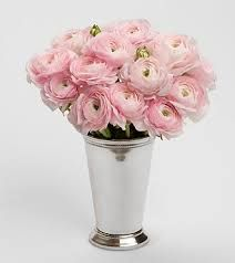 Image result for light pink ranunculus
