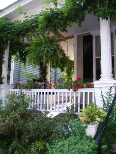 Are there dead plants, leaves, overhanging bushes or empty flower pots at your front entrance? If so, clear the dead vegetation and clutter and add seasonal pots of plants to keep the energy fresh and energized all year long. Geraniums in the summer are especially good as they are red and call in chi.