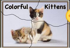 puzzles jigsaw called Colorful Kittens.  First cut the 4 pieces then ask your kid or kids to put it together again