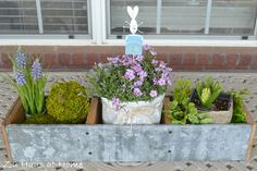 Adding Spring to the Tabletop (outside)