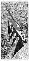 http://www.martin-raget.com/27-09-2010-Saint-Tropez-FRA-83-Voiles-de-Saint-Tropez-Creole-vs-Atlantic-Atlantic-Product-in-house-made-quality-paper-print-Size-50-cm-x-100-cm-Availa,en,igf1980p96n17.html