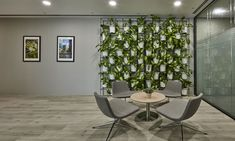 A well-thought through design that creates a workplace that is efficient yet comfortable, and also easy to maintain Office Lounge, Green Walls, Workplace, Spaces, Easy, Furniture, Design, Home Decor, Decoration Home