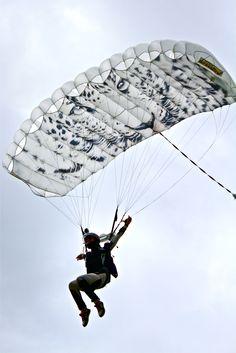 Shan Flying Her Crossfire 2 99 SkyArt Leopard Canopy