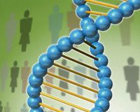 "After researchers sequenced the human genome, they had a ""map"" of the human genes in DNA. This new genetic knowledge opens up the possibility of developing ""targeted"" therapies for people with specific gene sequences, and it can help physicians choose from among existing medicines the treatments that best meet individual genetic, lifestyle, and environmental differences. The patient and physician can use this information to establish a program of health management."