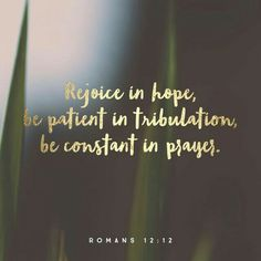 Romans be constant in prayer, Bible verse memes Bible Verses Quotes, Bible Scriptures, Faith Quotes, Scripture Verses, Bible Verse Hope, Youth Verses, Strength Bible Verses, Sunday Bible Verse, Bible Verses