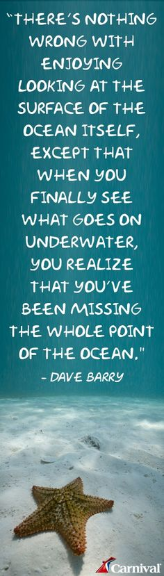 We had no idea how much there was to see underwater and how incredible scuba diving is. Motivational quotes motivation quotes #motivation #quote