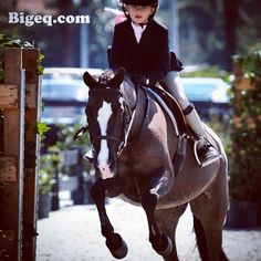 A little bit of Satin to start your day! One of our all time favorite ponies. :) #bigeq #hunterjumper