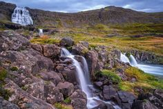 Root of all Life by Daniel Herr on 500px