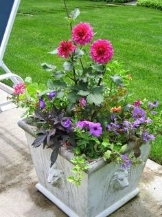 Container Gardening | Dreaming Gardens #creativecontainergardeningideas #containergardeningideasporch