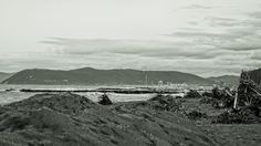Spiaggia-Marina di Massa - null