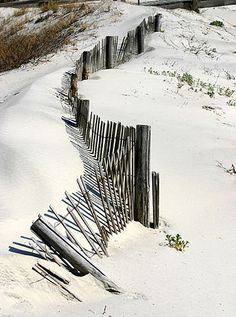 Tybee Island Dune Fence by Rachel Pennington on Flickr.