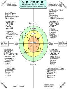 Herman Brain Dominance Inventory - profile of preferances