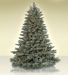 The all-new Savoy Blue Spruce is one of the most beautiful artificial  Christmas trees