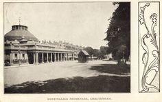 Cheltenham, Montpellier, postcard (1905)