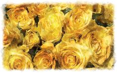 yellow roses bouquet   # Pin++ for Pinterest #