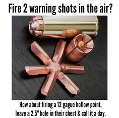 Do you suppose that Obama and Biden's protective service members fire two warning shots in the air first?