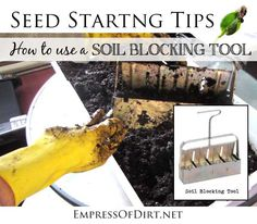 How to use a soil blocking tool for seed starting - great tool for faster, frugal home gardening | empressofdirt.net