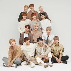 """""""more family photos! Woozi, Mingyu Wonwoo, Seungkwan, Carat Seventeen, Seventeen Album, Seventeen Scoups, Mingyu Seventeen, Hip Hop, K Pop"""
