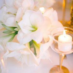 White... so pure so delicate #whitewedding #whiteflowers #dolcevita #weddinginspo #weddingflowers #amarillis #weddinginspiration #pictureoftheday