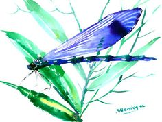 """Blue Dragonfly and Turquoise Plants, original watercolor painting 7"""" X 5"""""""