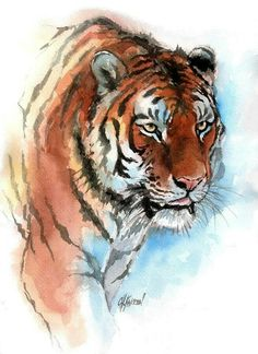 Amur Tiger Painting by Christine Karron Watercolor Tiger, Tiger Painting, Watercolor Animals, Watercolor Paintings, Tiger Drawing, Tiger Sketch, Animal Paintings, Animal Drawings, Art Drawings