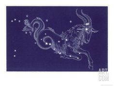 Capricorn Giclee Print by Roberta Norton at Art.com