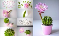 Another great looking clay succulent for your grouping – Artofit Cute Polymer Clay, Cute Clay, Polymer Clay Miniatures, Polymer Clay Flowers, Polymer Clay Creations, Polymer Clay Crafts, Polymer Clay Jewelry, Fimo Clay, Fondant Flowers